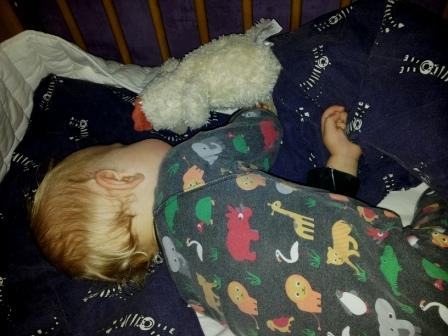 Rasmus_sover