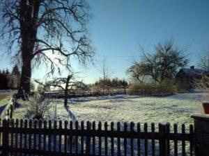 Bild på gnistrande frost